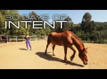 Healing with Horses – 30 Days of Intent with Deepak Chopra