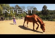 Healing with Horses 30 DAYS OF INTENT #4 – Deepak Chopra