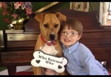 Xena – The Warrior Puppy & ASPCA Dog of the Year